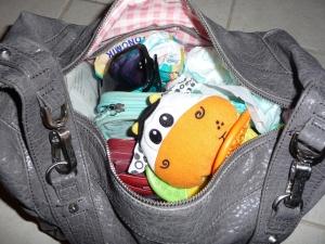 Blogcu Anne'nin DAĞINIK çantası