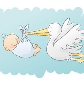 Leylek ve bebek
